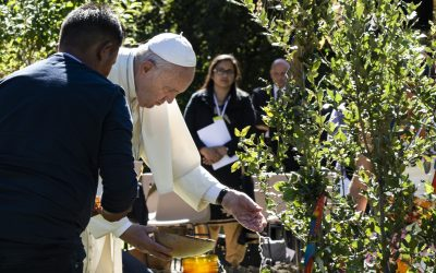 Papst Franziskus lädt uns zur Laudato Si'-Woche