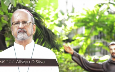 Laudato Si' Week in India: Time to reflect in roots and fruits